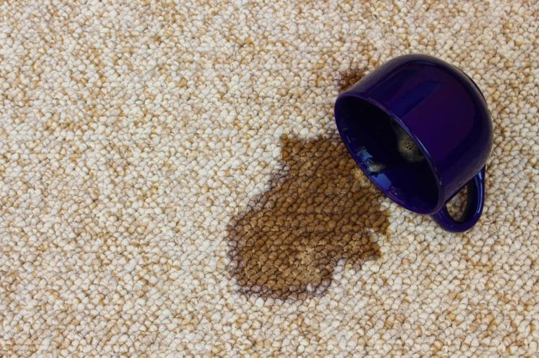 Carpet Cleaning Atlanta Top Force Services